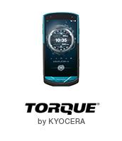 TORQUE G02