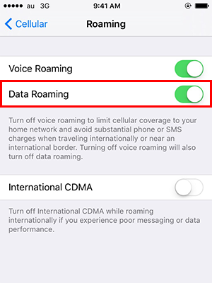 """Toggle """"Data Roaming"""" to ON."""