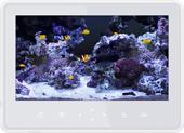 「熱帯魚」癒し系インテリア